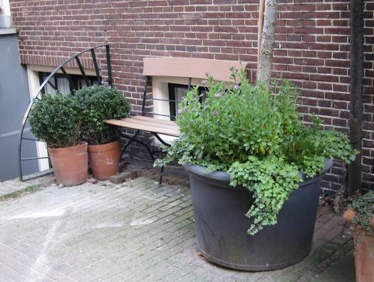 Kannattaa poiketa pikkukaduille. Tässä jonkun puutarhaunelma kadun reunassa.